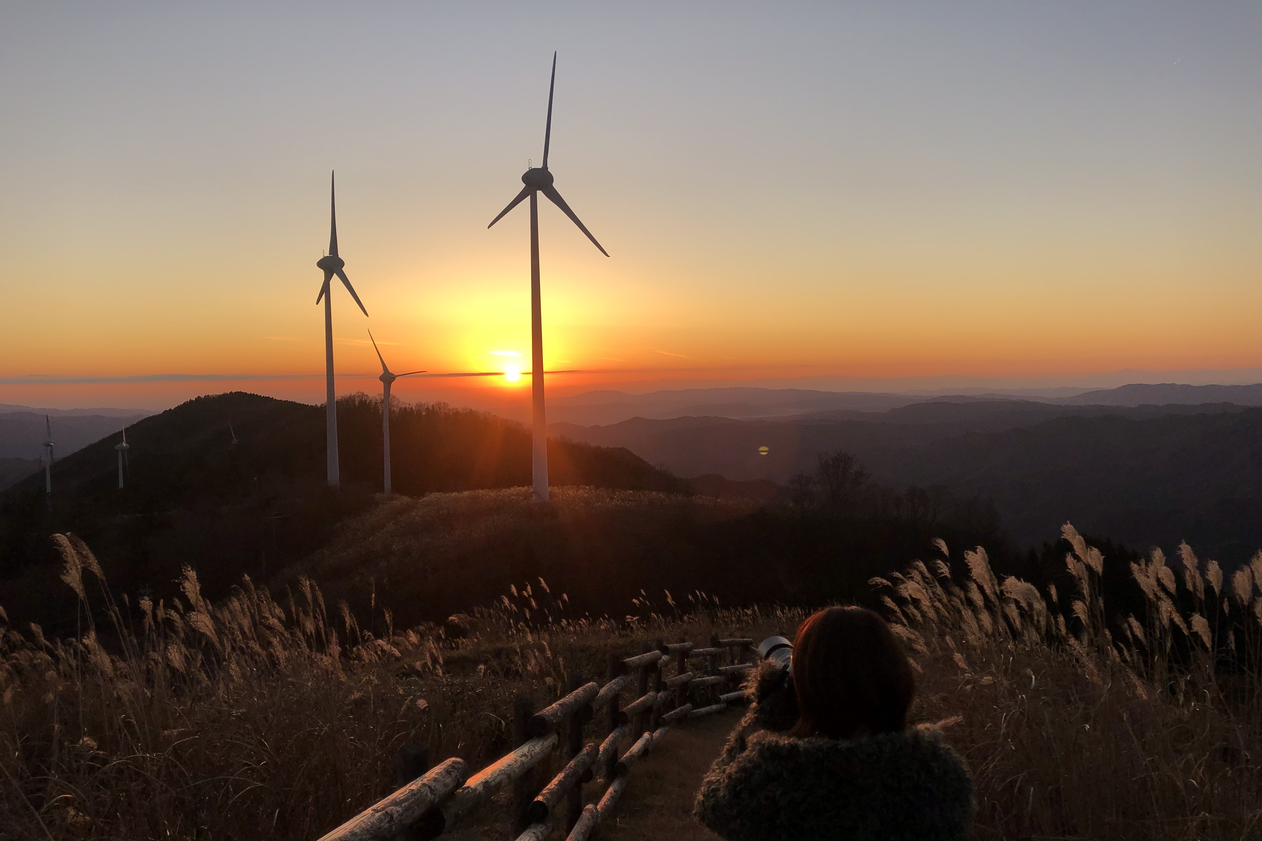 夕日 風力発電